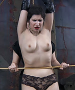 Stripped, roped, caned, trained and vibed