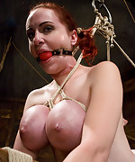 Redhead with massive breasts tied up and abused hard