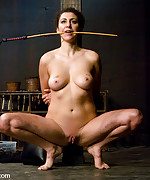 Princess donna tortured and trained to serve cock