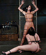Two beauties bound, machine fucked and vibed