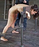 Cuffed, put into stocks, caned, pegged, shocked