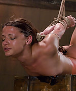 Ten is tied down & made to endure plugs and clamps