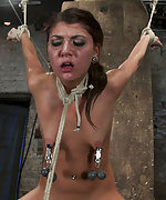 Roped mounted to a sybian, tits weighted, pegged, forced to cum