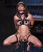 Strapped, cuffed, suspended, pegged, dildoed, vibed