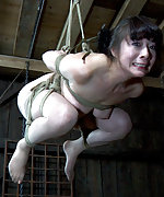 Roped, gagged, suspended, dildoed, trained to suck