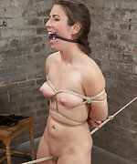 Crotch rope walk and challenging hogtie suspension