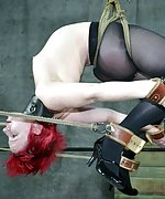 Caged, roped, suspended, dildoed and vibed