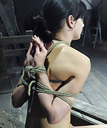 Roped, hogtied, suspended, screaming for mercy