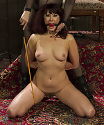 Taken down, tied, punished and anally pounded