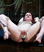 Roped, electro-anal-plugged, forced to cum